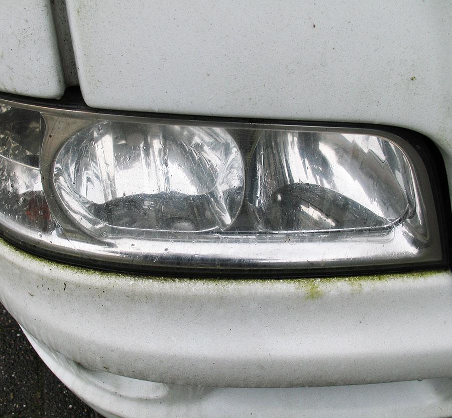 groenalg rondom koplamp